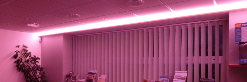 Licht Trends-